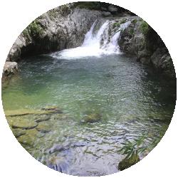 Red Local de turismo San Rafael, Tour San Rafel Ecoturismo turismo Rural comunitario Aventura Bienestar, Que Hacer en San Rafael-45